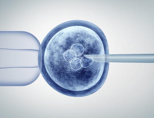 Preservar la fertilidad con la vitrificación de ovocitos